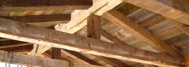 What Species Of Wood Are Hand Hewn Beams Altruwood